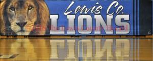 Lions BannerWM